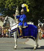 Historisches Kostümfest Purbach 2008 - zur Verfügung gestellt vom Tourismusverband Purbach